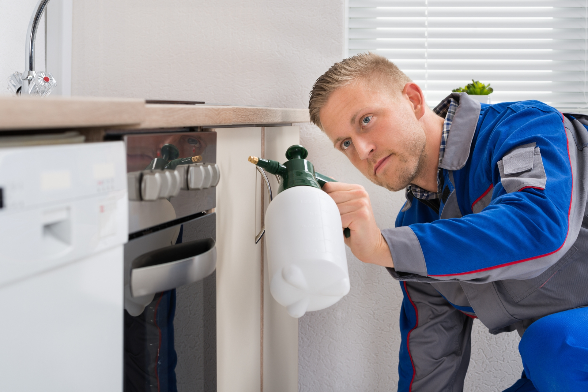 Pest Inspection, Pest Control in Raynes Park, South Wimbledon, SW20. Call Now 020 8166 9746