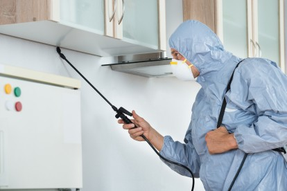 Home Pest Control, Pest Control in Raynes Park, South Wimbledon, SW20. Call Now 020 8166 9746
